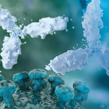 Biopharma Compass: Next Generation Therapeutic Protein Characterization By Mass Spectrometry
