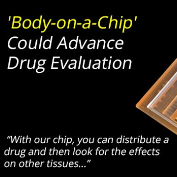 'Body-on-a-Chip' Could Advance Drug Evaluation