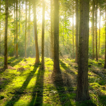 Boehringer Selects NOVA-EM for Their Global Environmental Monitoring Program
