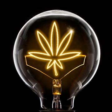 Cannabis Testing: Empowering analytical profit