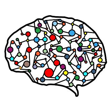 Casting a Neural Net over RNA-Seq Data