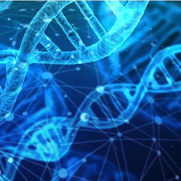 Compound Blocks Common Genetic Cause of ALS & Frontotemporal Dementia