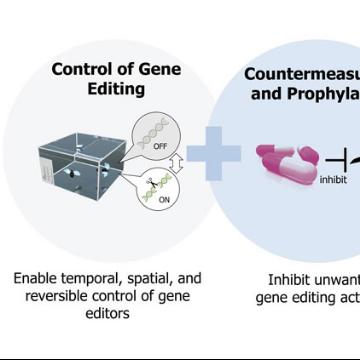 DARPA Pours $65 Million Into Making CRISPR Safer