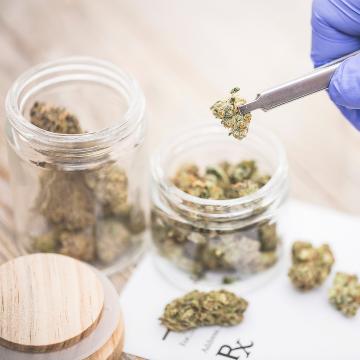 DEA Green-lights Novel Cannabinoid Research