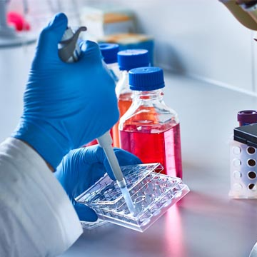 Detecting Cancer Earlier: The Importance of Collaboration, Funding and Technology