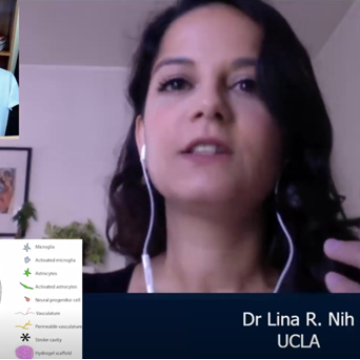 Dr. Lina R. Nih Discusses Her Novel Approach to Brain Vasculature Regeneration