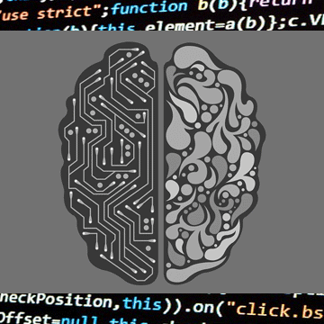 Eagle-Eyed Machine Learning Algorithm Outdoes Human Experts