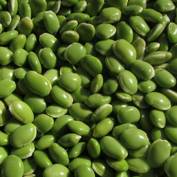 Eating Legumes Lowers Diabetes Risk