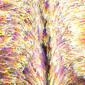Embryonic Chick Study Reveals How Cells are Recruited to Form Hindgut