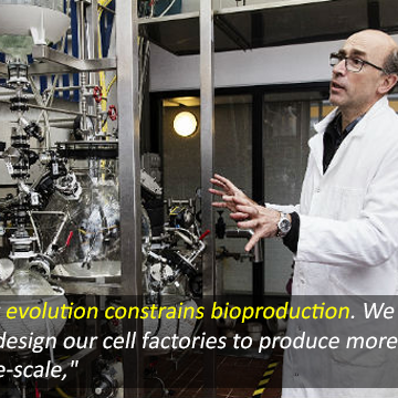 Evolution Threatens Efficient Bioproduction Scale-Up