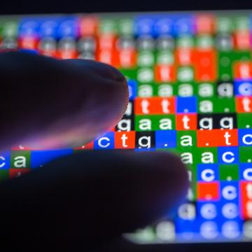 Exploring African Genetic Diversity Unlocks Disease Susceptibility Traits