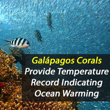Galápagos Corals Reveal Evidence of Ocean Warming