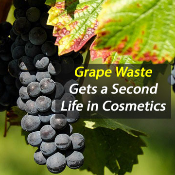 Grape Waste Goes From Landfill to Lipstick
