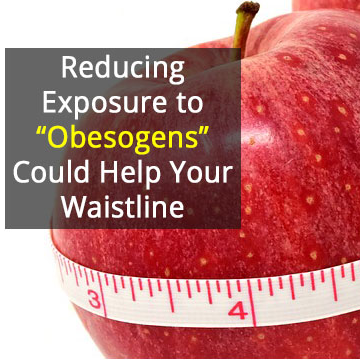 Hormone-Disrupting Environmental Chemicals May be Making Us Fat