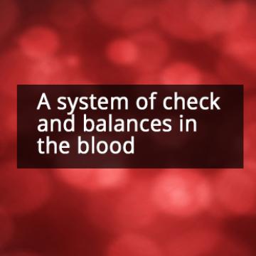 How Hematopoietic Stem Cells Balance Activation and Dormancy