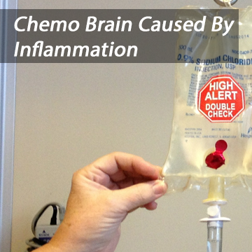 Inflammation Causes Chemo Brain