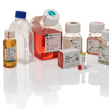 Introducing Gibco™ Cancer Cell Culture Starter Kits