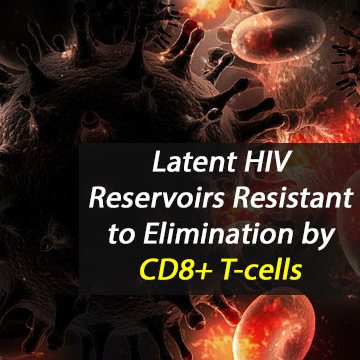 Latent HIV Reservoirs Inherently Resistant to Elimination by CD8+ T-cells