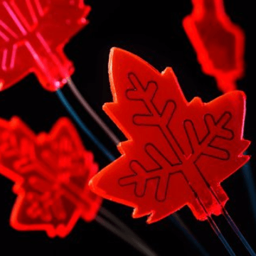 Leaf-Inspired Continuous-Flow Photochemistry