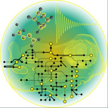 New Method Uses NMR to Study Metabolism