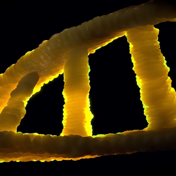 Novel Gene Variant Linked to ALS