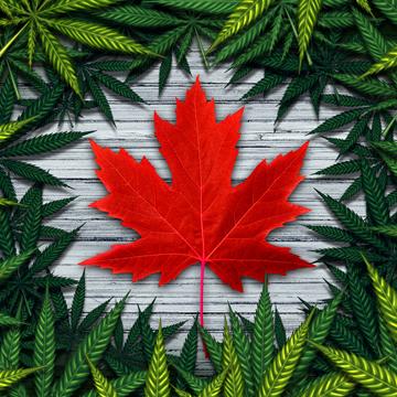 Ontario Announces Delays to Retail Cannabis Sales