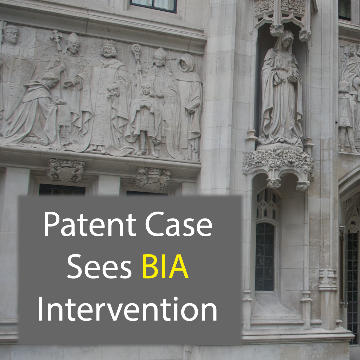 Patent Plausability Case Sees BIA Intervention