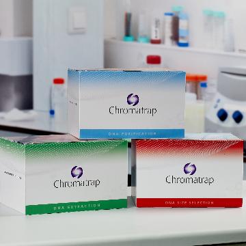 Ready to use DNA Purification Kits