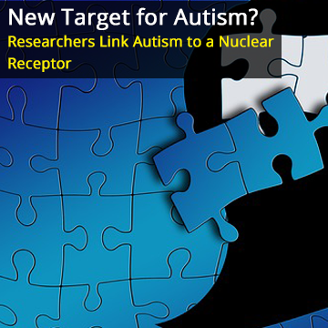 Researchers Link Defects in a Nuclear Receptor in the Brain to Autism Spectrum Disorders