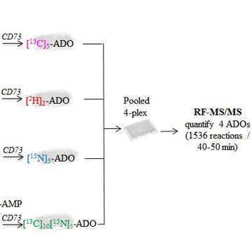 Robust Multiplex Mass Spectrometric Assay for Screening Small-Molecule Inhibitors