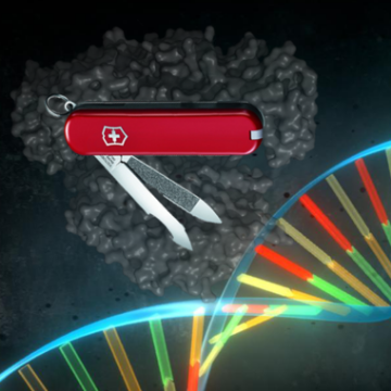 Searching for the CRISPR Swiss-army Knife