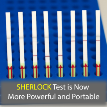 SHERLOCK, the Paper-Based DNA Sleuth, Receives a Powerful Upgrade