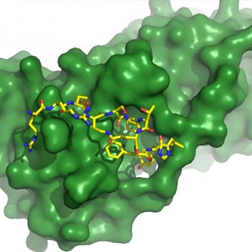 Tackling Cancer at Ground Zero: Designer Molecule Inhibits Protein Target
