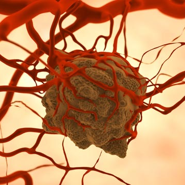 Targeted Photodynamic Therapy Stops Tumor Growth in 70% of Mice