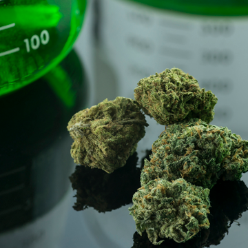 The Evolution of Cannabis Testing
