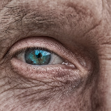 The Future of Lab-Grown Eye Transplants