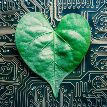 Tree-on-a-Chip Developed