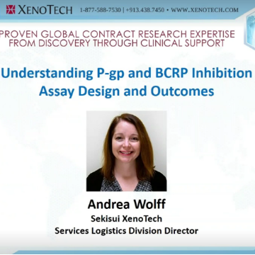 Understanding P-gp and BCRP Inhibition Assay Design and Outcomes