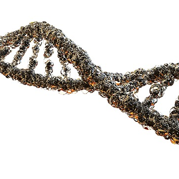 Unprecedented View of Gene Therapy Virus
