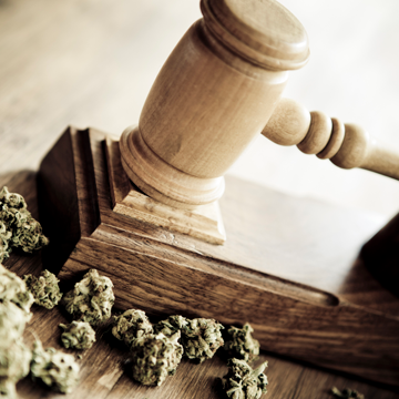 U.S. House Judiciary Committee Passes Act on Growing Medicinal Cannabis for Research