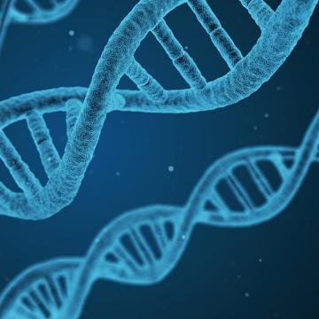 WEED Adds 30 Year Genomics Veteran to Board of Directors