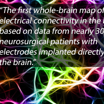 Whole-Brain Map of Memory Circuits Constructed from Human Data