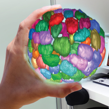 With 3D Cell Culture Your Science Comes Alive