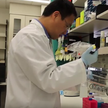 Working Out Which Therapy is Best for Treating Metastatic Cancer